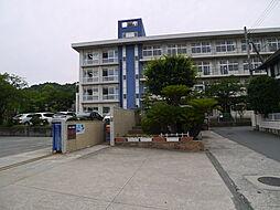 [一戸建] 兵庫県高砂市阿弥陀町魚橋 の賃貸【/】の外観