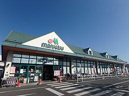 マルエツ市川菅野店 263m