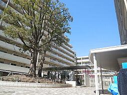 目黒駅 23.3万円