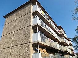 金ヶ森ハイツ[3階]の外観