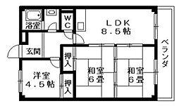 ハイツオプティマ[2階]の間取り