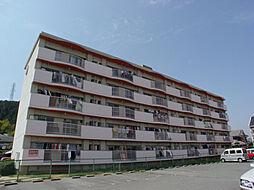 兵庫県姫路市香寺町溝口の賃貸マンションの外観