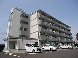 滋賀県彦根市野口町の賃貸マンションの外観