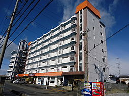 滋賀県彦根市松原町の賃貸マンションの外観