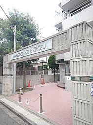 東京都世田谷区玉堤1丁目の賃貸マンションの外観