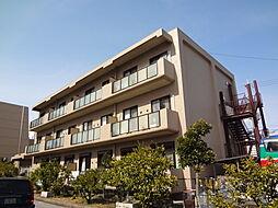 滋賀県長浜市大島町の賃貸マンションの外観