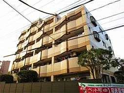 東京都八王子市松木の賃貸マンションの外観