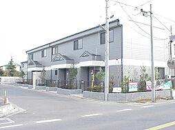 [テラスハウス] 千葉県白井市冨士 の賃貸【/】の外観