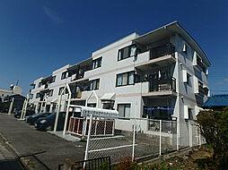 栃木県宇都宮市桜5の賃貸マンションの外観