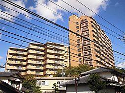 ソロン名島[1212号室]の外観
