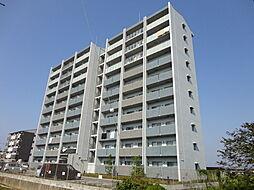 滋賀県彦根市八坂町の賃貸マンションの外観