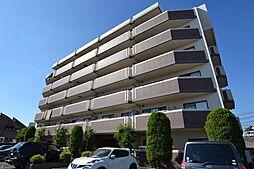 メゾンドプリマベーラ[5階]の外観