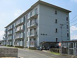 松ヶ浦コーポ[408号室]の外観