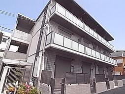 Y's court 甲子園