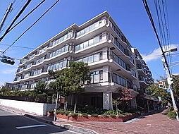 阪神本線 芦屋駅 徒歩5分の賃貸マンション