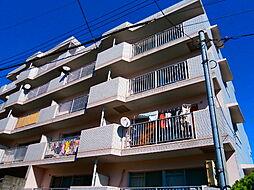 神奈川県横浜市保土ケ谷区今井町の賃貸マンションの外観