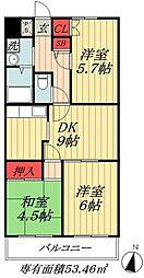 千葉県市川市関ケ島の賃貸マンションの間取り