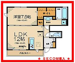 京王線 多磨霊園駅 徒歩20分の賃貸アパート 1階1LDKの間取り