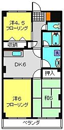 神奈川県横浜市旭区白根5丁目の賃貸マンションの間取り