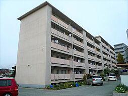 鈴谷住宅1号棟[4階]の外観