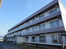 富山県富山市八尾町杉田の賃貸アパートの外観