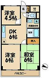 須藤パークハイツ[102号室]の間取り