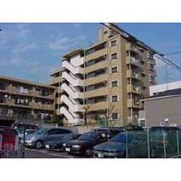 ペルリーノ武蔵関E[4階]の外観