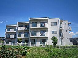 愛知県豊田市上原町西山の賃貸マンションの外観