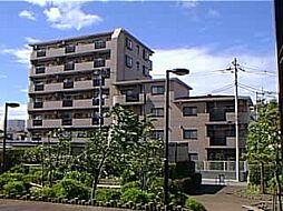 グランシエロ川口本町[203号室]の外観