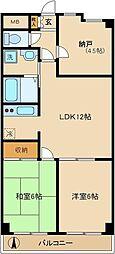 シャンポール新城[2階]の間取り
