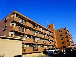 栃木県小山市城東2丁目の賃貸マンションの外観