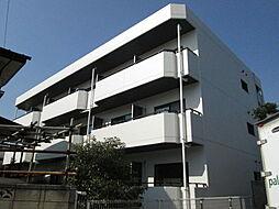 千葉県市川市柏井町2の賃貸マンションの外観