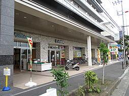 [一戸建] 神奈川県横浜市港北区日吉4丁目 の賃貸【/】の外観