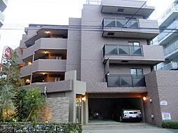 シティテラス中杉アベニュー[3階]の外観