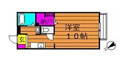 ソレジオ大島[203号室]の間取り