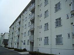 東本郷[2階]の外観