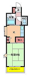 千葉県柏市あけぼの3の賃貸マンションの間取り