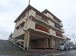 栃木県宇都宮市陽南2丁目の賃貸マンションの外観