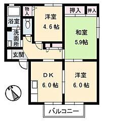 メゾン武智 D[1階]の間取り