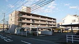 メゾン・ド香陽[3階]の外観