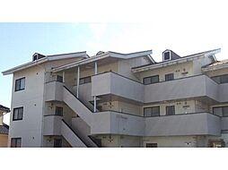 エムズガーデン[3階]の外観