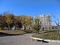 西初石近隣公園...