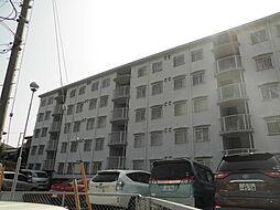 千葉県柏市明原2丁目の賃貸マンションの外観
