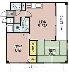 ドーム・シシャスーチェ梅津[5階]の間取り
