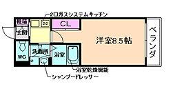 プロシードK2[3階]の間取り