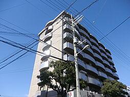 インフィルドハイツ[6階]の外観
