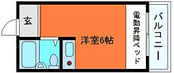 篠原ヒルズコート[2階]の間取り