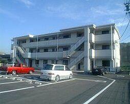 長野県諏訪市大字中洲の賃貸マンションの外観