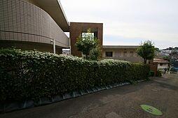 陽光台MANSION[-1階]の外観