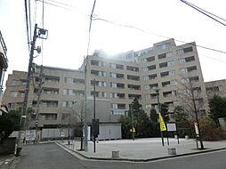 恵比寿駅 24.9万円